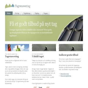 Tagrenoveringer - roofing repair