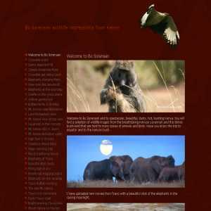 Bo Sorensen wildlife Kenya