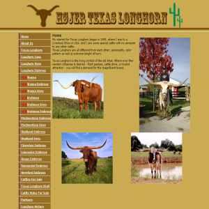 Hoejer Texas Longhorn - Genetics